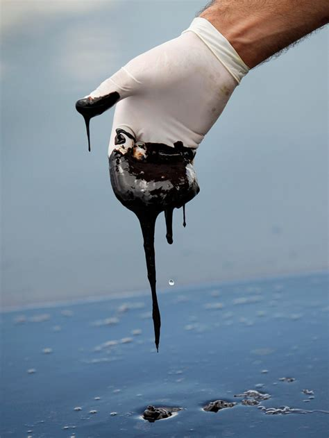 Gulf Oil Spill Anniversary: Resilience Amid Unknowns